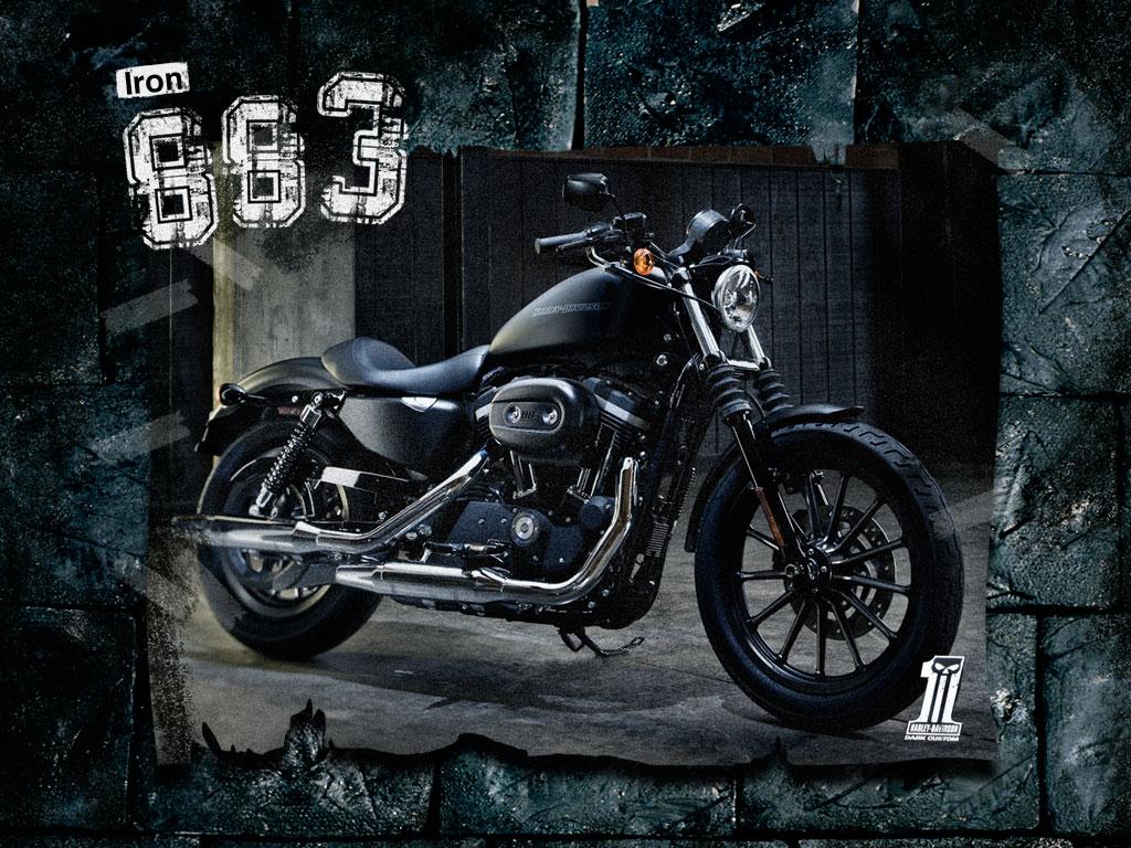 Harley-Davidson | Biker Excalibur 2